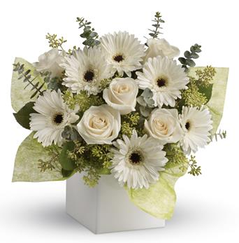 Called: Timeless Treasure. Description: Send serenity with this artful arrangement of pure white roses and gerberas.