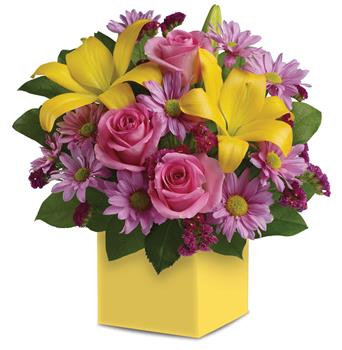 Called: Serenade. Description: A joyous surprise, this bright, beautiful box arrangement of pink roses, golden lilies and lavender daisies is sure to please.