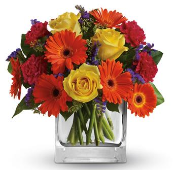 Called: Citrus Splash. Description: Make a splash, Orange gerberas, yellow roses and hot pink carnations are a bold, beautiful gift for any happy occasion.