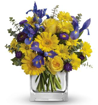 Called: Summer Breeze. Description: As invigorating as a cool summer breeze, this amazing arrangement pairs eye-catching iris with golden gerberas and roses for a sunny-day sensation.