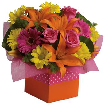 Called: Starburst Splash. Description: Joyful moments call for happy flowers! This box of blooms does the trick with orange lilies, pink roses, yellow daisies and hot pink gerberas.