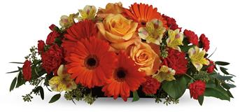 Called: Sweet Sorbet. Description: A sweet treat everyone will enjoy! Delight your special someone with this outstanding orange arrangement of gerberas, roses and alstroemeria.