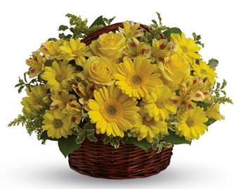 Called: Basket of Sunshine. Description: They will be walking on sunshine after receiving this cheerful basket of roses, gerberas, alstroemeria and daisies!