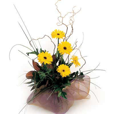 Called: Sunny Bunch. Description: The bouquet will bright sunshine to any dull day.