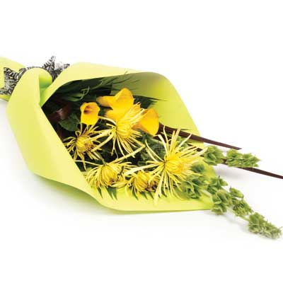 Called: Thoughtful. Description: This bright bouquet will brighten up that special someones day.