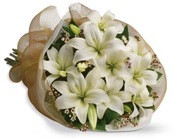 Called: White Delight. Description: Let someone know they are special by sending these fragrant blooms of bright white and cream lilies.