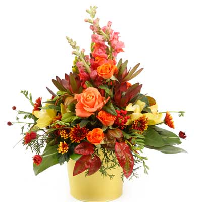 Called: Contralo. Description: This stunning bucket arrangement shines with bright colours and variety.