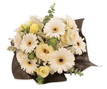 Called: White Beauty. Description: An elegant arrangement of white gerberas, lisianthus and spray roses that will lighten up any room.