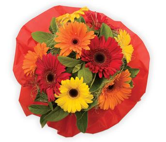 Called: Bright Delight. Description: A bright and funky gerbera bouquet is a sure way to brighten up someones day.