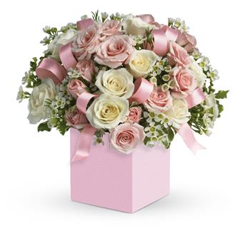 Called: Celebrating Baby Girl. Description: Celebrate the cutest baby girls arrival with this charming box arrangement that arrives chock full of pretty flowers. Perfect for baby showers too!