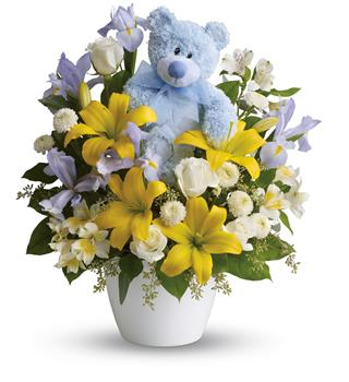 Called: Cuddles for Him. Description: This adorable arrangement will brighten any room with its beautiful blooms and soft blue bear. The perfect gift for a new baby boy!