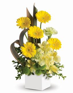 Called: Sunbeam Smiles. Description: Send smiles across the miles. This artful arrangement of sunny yellow blooms in a modern pot is specially designed to warm hearts and brighten days!