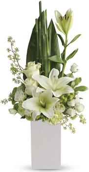 Called: Peace and Harmony. Description: Your sincere wishes for peace and harmony resonate beautifully in this zen-like arrangement of white blooms and sculptural greens.