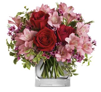 Called: Hearts Treasure. Description: Make her blush with the beautifully blushing blooms of this romantic arrangement. Arranged inside a glass cube that catches the light and radiates your love, it is a heartfelt gift she will always remember!