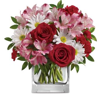 Called: Undying Love. Description: Fresh and fabulous, this stylish blend of white daisies, red roses, pink alstroemeria will brighten any occasion. Arranged inside a glass cube, it will be sure to delight.