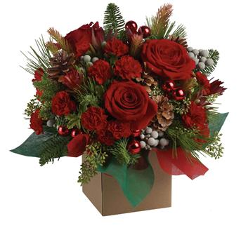 Called: Christmas Mystic. Description: The splendour of the season is beautifully captured in this traditional arrangement. The mix of blossoms, greens and textures is a brilliant way to say Merry Christmas!