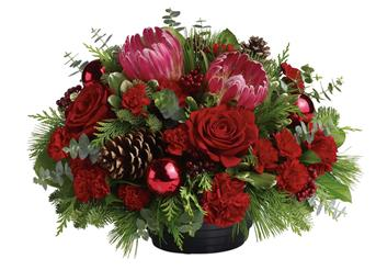 Called: Christmas Grandeur. Description: All will be bright this season when you send this joyful rose and native Christmas arrangement. This gorgeous arrangement, will brighten up the festivities beautifully.