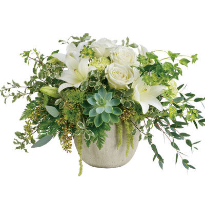 Called: Tanami Beauty. Description: Natural elegance to celebrate any occasion! Like a flourishing garden, this gorgeous bouquet of luxurious white blooms and fresh greens in a weather slate pot is a feast for the senses.